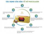 tac-dung-cua-sam-to-nu-collagen-1.jpg